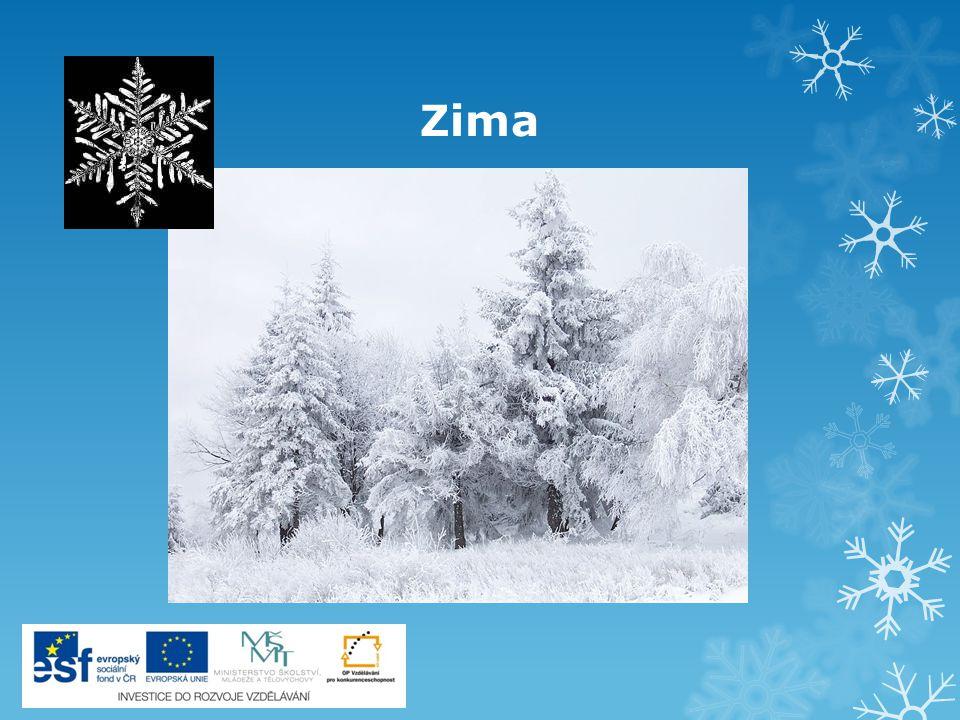 Trojrozměrný zimní obrázek Zima je krásné období, pokud je to ta správná zima: závěje sněhu, teplota bod bodem mrazu a když k tomu svítí ještě sluníčko, není nic příjemnějšího a člověk se těší ven.