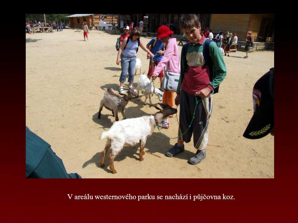 V areálu westernového parku se nachází i půjčovna koz.