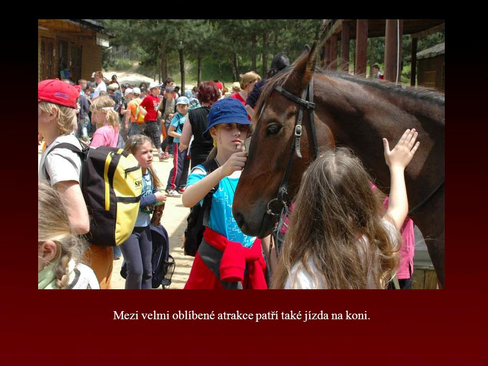Mezi velmi oblíbené atrakce patří také jízda na koni.
