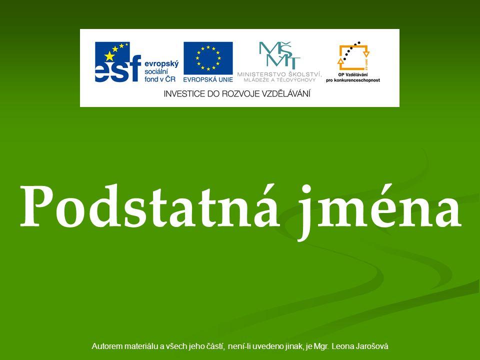 Podstatná jména Autorem materiálu a všech jeho částí, není-li uvedeno jinak, je Mgr. Leona Jarošová