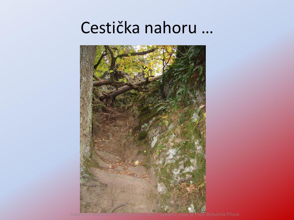 Cestička nahoru … Autorem materiálu a všech jeho částí, není-li uvedeno jinak, je PhDr. Bohumila Fillová.