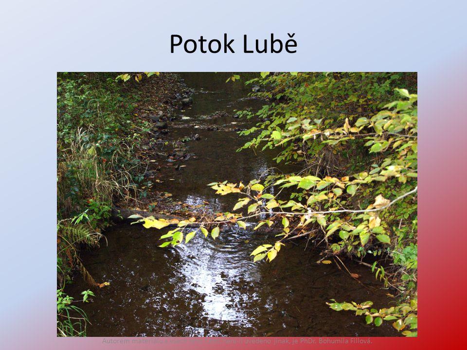 Potok Lubě Autorem materiálu a všech jeho částí, není-li uvedeno jinak, je PhDr. Bohumila Fillová.