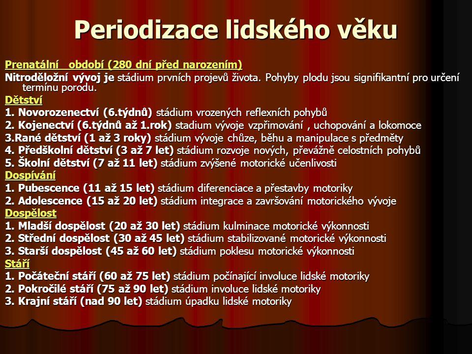 Periodizace lidského věku Prenatální obdobíPrenatální období (280 dní před narozením) Prenatální období Nitroděložní vývoj je stádium prvních projevů