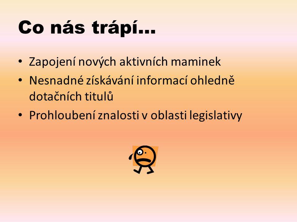 Co nás trápí… Zapojení nových aktivních maminek Nesnadné získávání informací ohledně dotačních titulů Prohloubení znalosti v oblasti legislativy