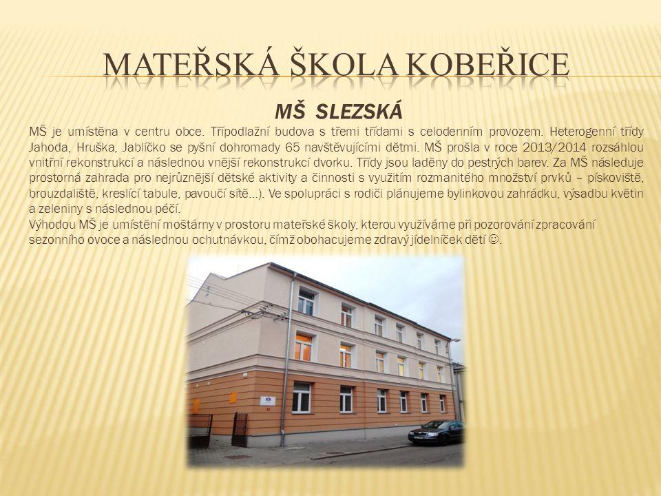 MŠ SLEZSKÁ MŠ je umístěna v centru obce. Třípodlažní budova s třemi třídami s celodenním provozem. Heterogenní třídy Jahoda, Hruška, Jablíčko se pyšní