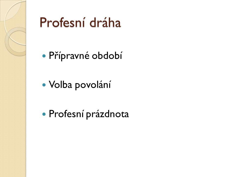 Profesní dráha Přípravné období Volba povolání Profesní prázdnota