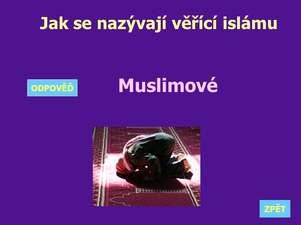 Jak se nazývají věřící islámu Muslimové ZPĚT ODPOVĚĎ