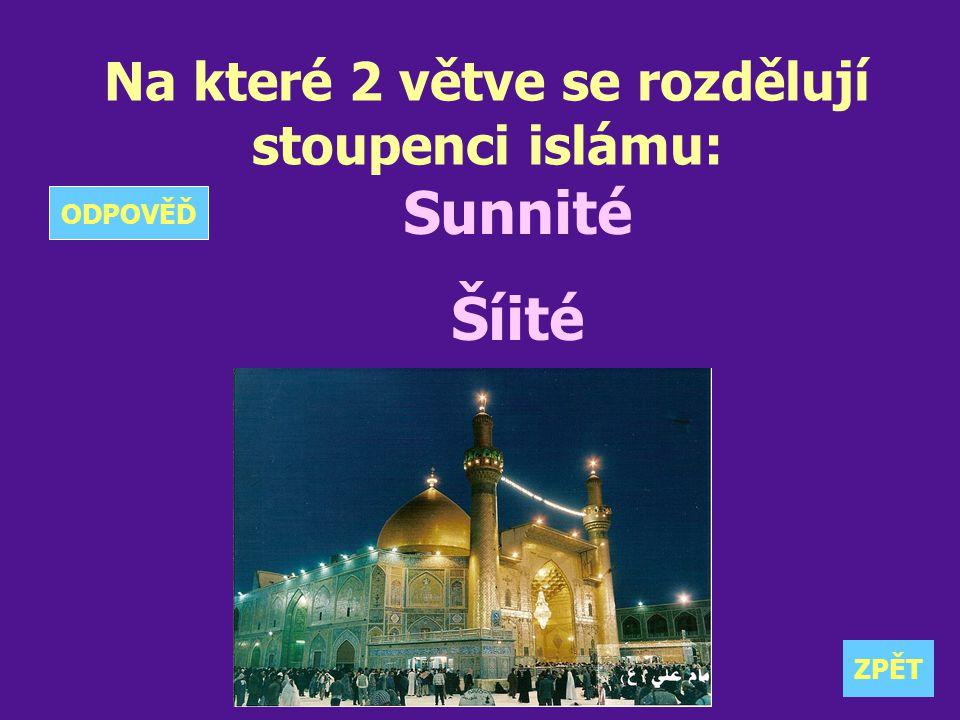 Na které 2 větve se rozdělují stoupenci islámu: Sunnité Šíité ZPĚT ODPOVĚĎ