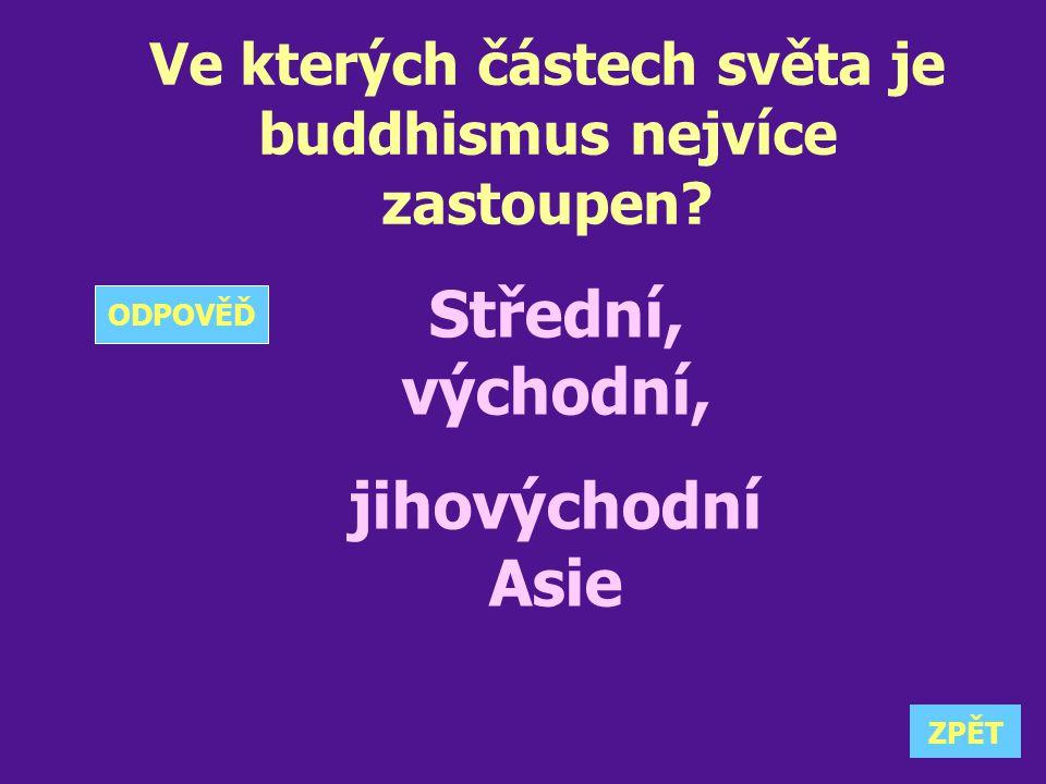 Ve kterých částech světa je buddhismus nejvíce zastoupen? Střední, východní, jihovýchodní Asie ZPĚT ODPOVĚĎ