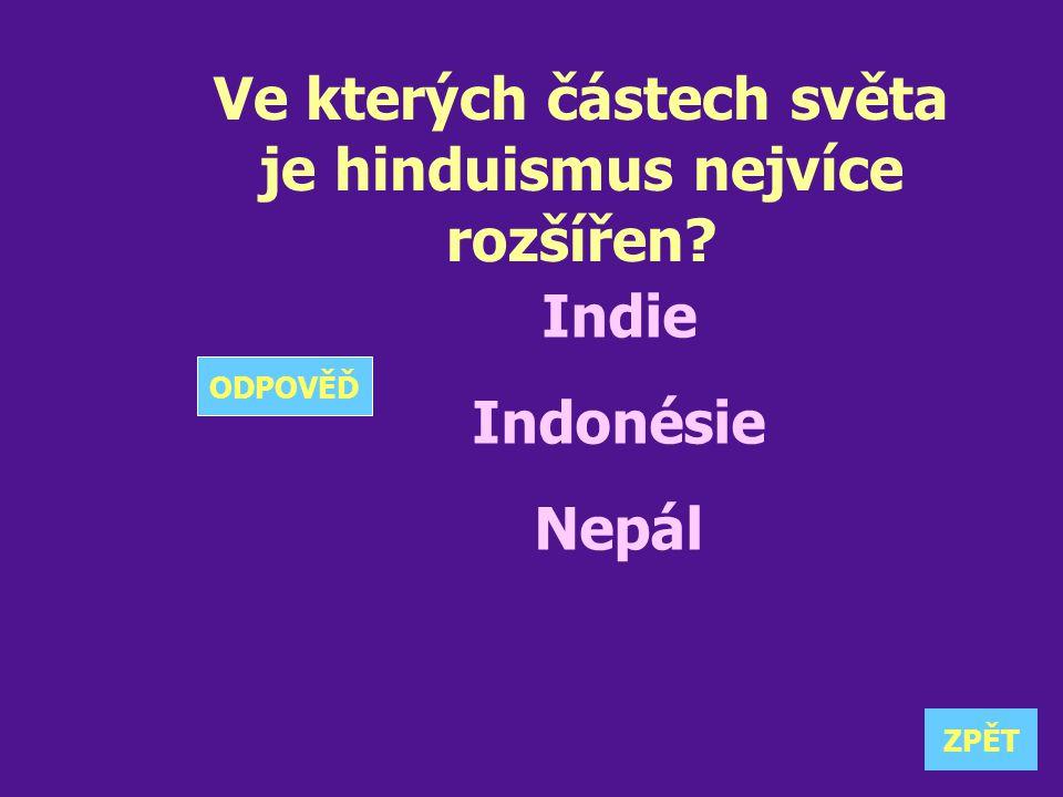 Ve kterých částech světa je hinduismus nejvíce rozšířen? Indie Indonésie Nepál ZPĚT ODPOVĚĎ