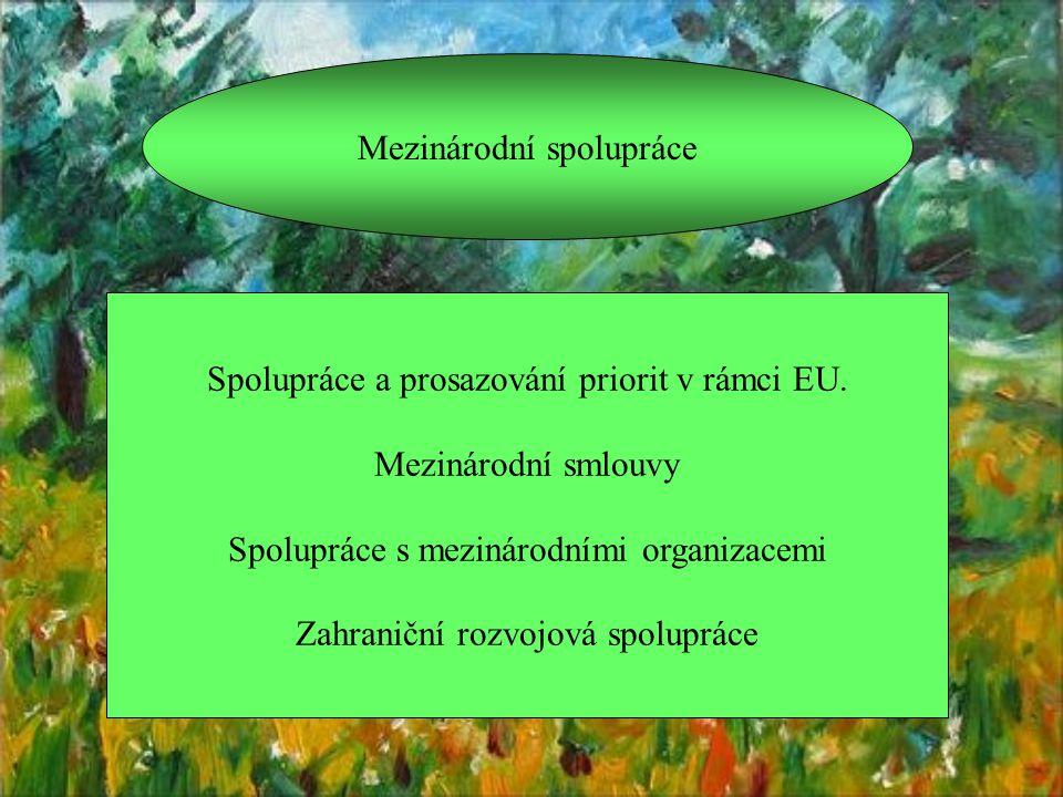 Mezinárodní spolupráce Spolupráce a prosazování priorit v rámci EU.