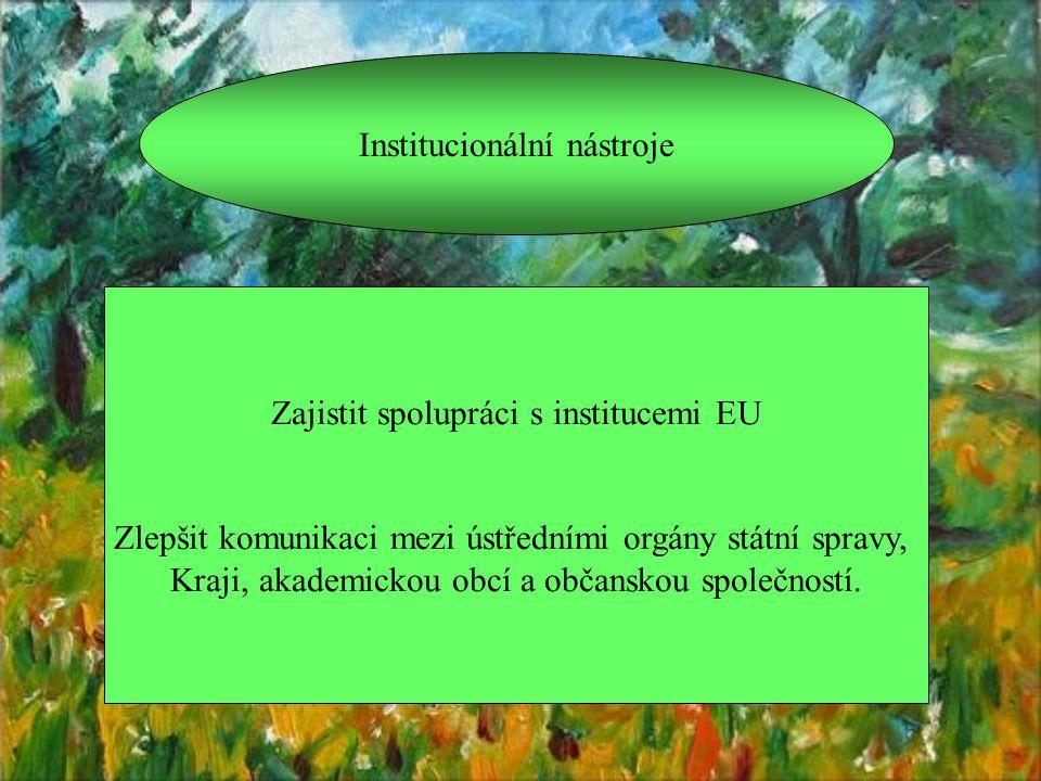 Institucionální nástroje Zajistit spolupráci s institucemi EU Zlepšit komunikaci mezi ústředními orgány státní spravy, Kraji, akademickou obcí a občanskou společností.