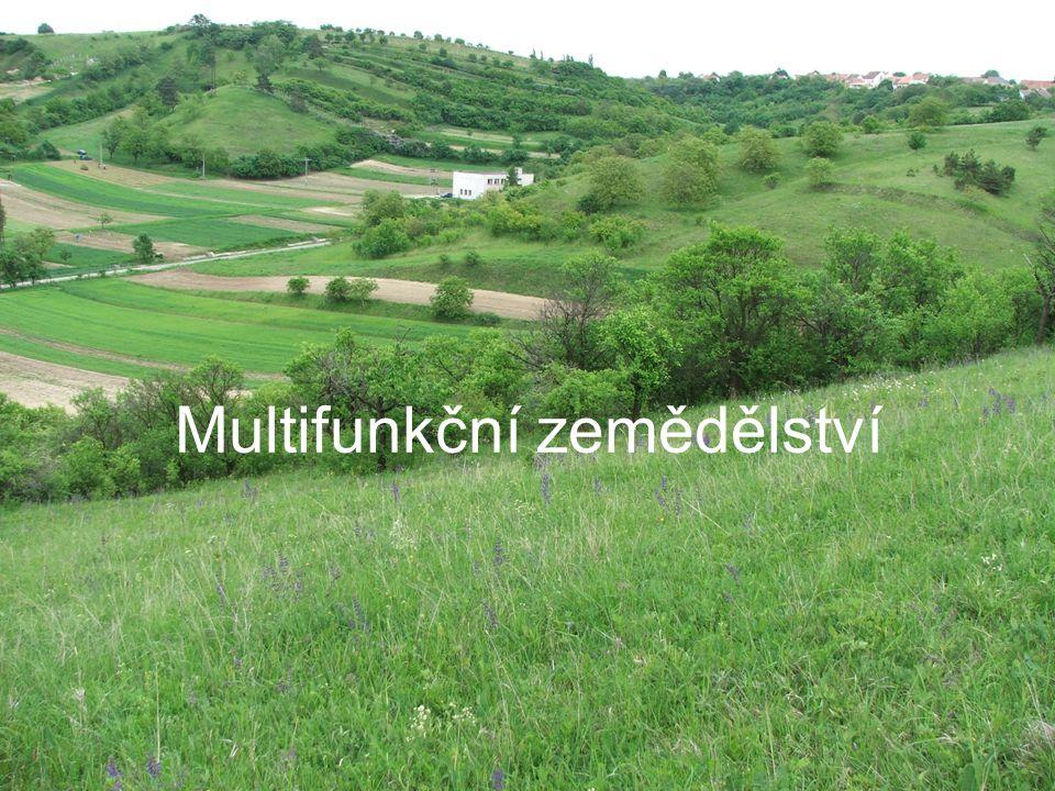 Multifunkční zemědělství