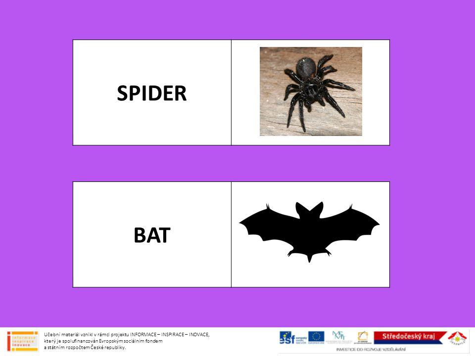 SPIDER BAT Učební materiál vznikl v rámci projektu INFORMACE – INSPIRACE – INOVACE, který je spolufinancován Evropským sociálním fondem a státním rozp