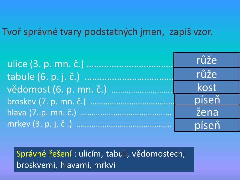 Tvoř správné tvary podstatných jmen, zapiš vzor. ulice (3. p. mn. č.) ……………………………………. tabule (6. p. j. č.) …………………………………….. vědomost (6. p. mn. č.) ……