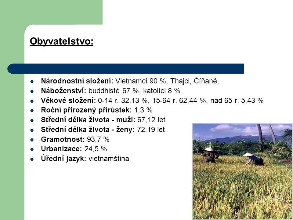 Obyvatelstvo: Národnostní složení: Vietnamci 90 %, Thajci, Číňané, Náboženství: buddhisté 67 %, katolíci 8 % Věkové složení: 0-14 r. 32,13 %, 15-64 r.