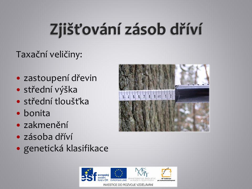 Taxační veličiny: zastoupení dřevin střední výška střední tloušťka bonita zakmenění zásoba dříví genetická klasifikace
