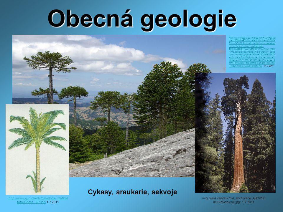 Obecná geologie http://www.cez-okno.net/files/clanok-subory-2009/dinosaury.gifhttp://www.cez-okno.net/files/clanok-subory-2009/dinosaury.gif /1.7.2011 http://zs1.kraslice.indos.cz/prace/www/kaslova/PRA1.JPG/ http://zs1.kraslice.indos.cz/prace/www/kaslova/PRA1.JPG/ 1.7.2011 Archeopterix