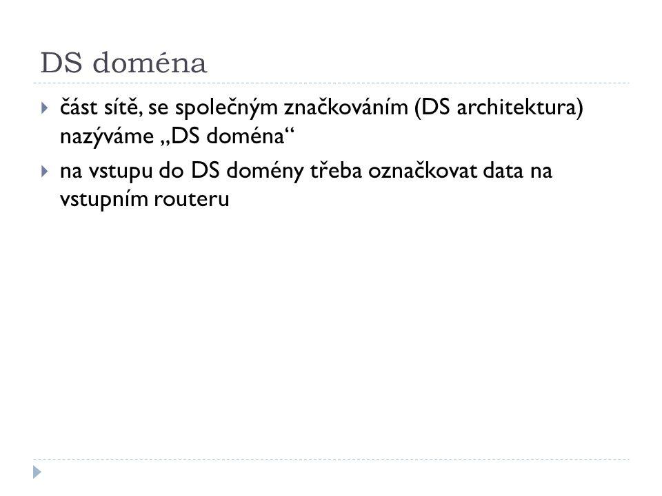 """DS doména  část sítě, se společným značkováním (DS architektura) nazýváme """"DS doména  na vstupu do DS domény třeba označkovat data na vstupním routeru"""