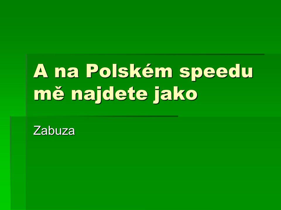 A na Polském speedu mě najdete jako Zabuza
