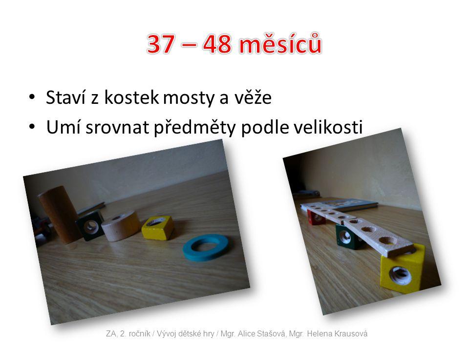 Staví z kostek mosty a věže Umí srovnat předměty podle velikosti ZA, 2. ročník / Vývoj dětské hry / Mgr. Alice Stašová, Mgr. Helena Krausová