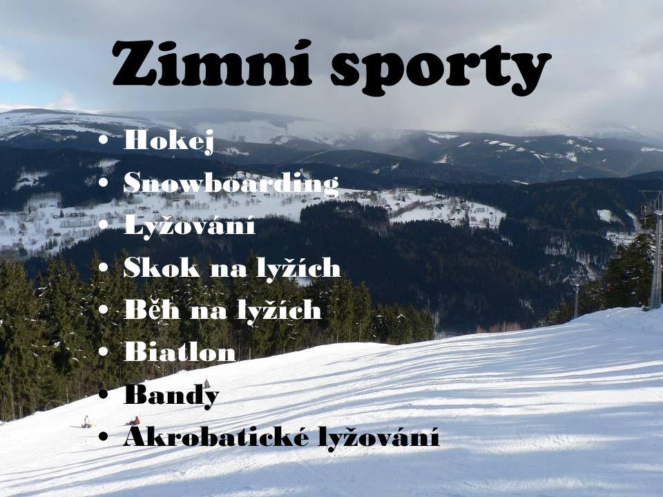 Zimní sporty Hokej Snowboarding Lyžování Skok na lyžích B ě h na lyžích Biatlon Bandy Akrobatické lyžování
