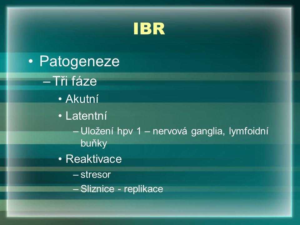IBR Patogeneze –Tři fáze Akutní Latentní –Uložení hpv 1 – nervová ganglia, lymfoidní buňky Reaktivace –stresor –Sliznice - replikace