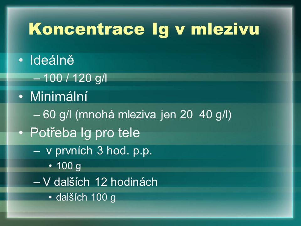 Koncentrace Ig v mlezivu Ideálně –100 / 120 g/l Minimální –60 g/l (mnohá mleziva jen 20 40 g/l) Potřeba Ig pro tele – v prvních 3 hod. p.p. 100 g –V d