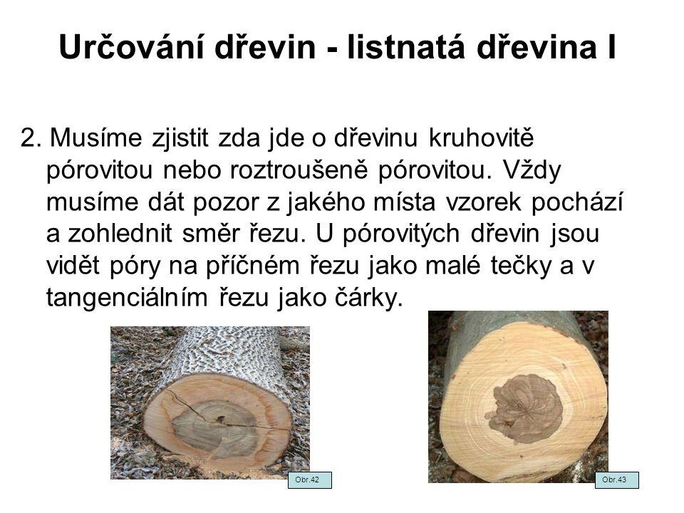 Určování dřevin - listnatá dřevina I 2. Musíme zjistit zda jde o dřevinu kruhovitě pórovitou nebo roztroušeně pórovitou. Vždy musíme dát pozor z jakéh