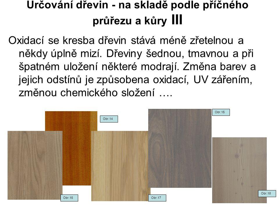 Určování dřevin - na skladě podle příčného průřezu a kůry III Oxidací se kresba dřevin stává méně zřetelnou a někdy úplně mizí. Dřeviny šednou, tmavno