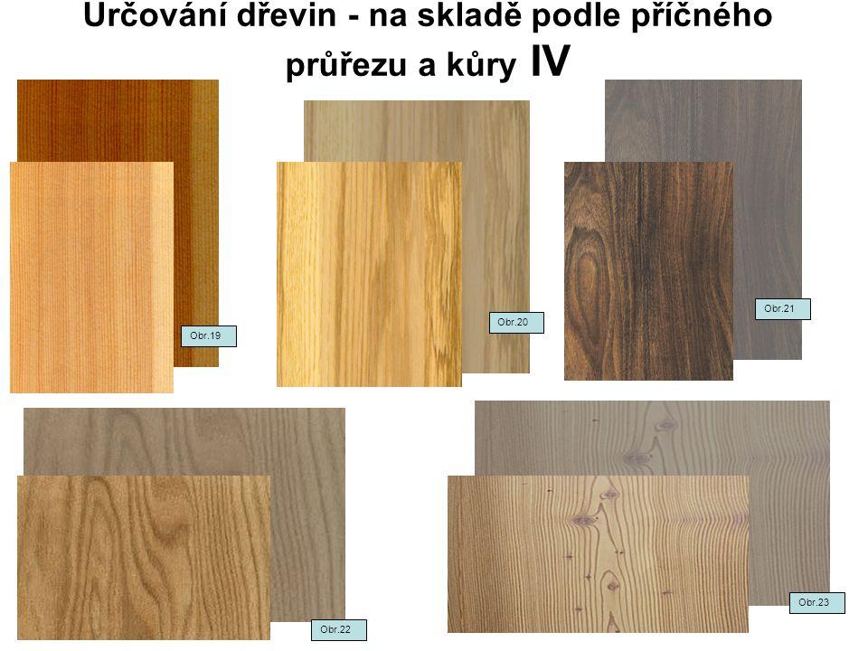 Určování dřevin - na skladě podle příčného průřezu a kůry IV Obr.22 Obr.21 Obr.23 Obr.19 Obr.20