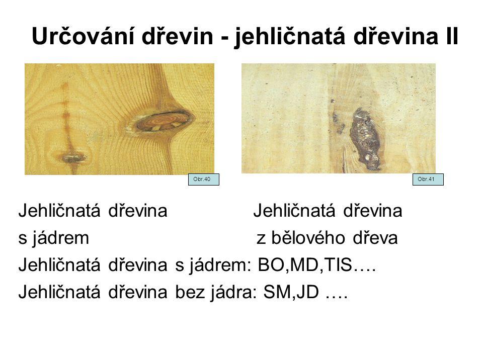 Určování dřevin - jehličnatá dřevina II Jehličnatá dřevina s jádrem z bělového dřeva Jehličnatá dřevina s jádrem: BO,MD,TIS…. Jehličnatá dřevina bez j