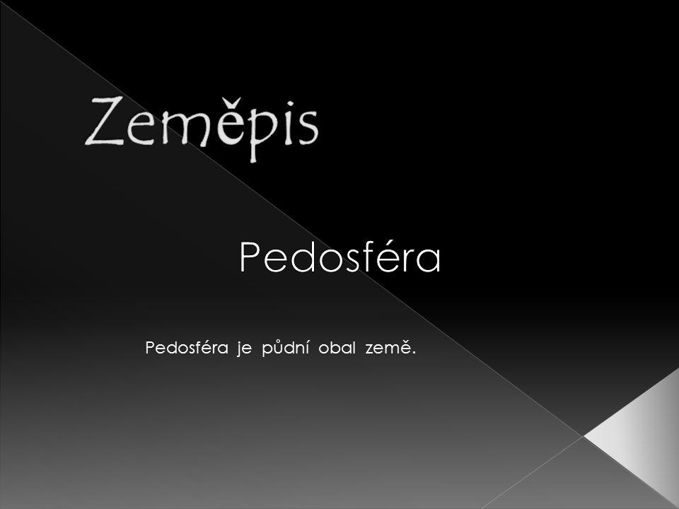 Pedosféra je půdní obal země.
