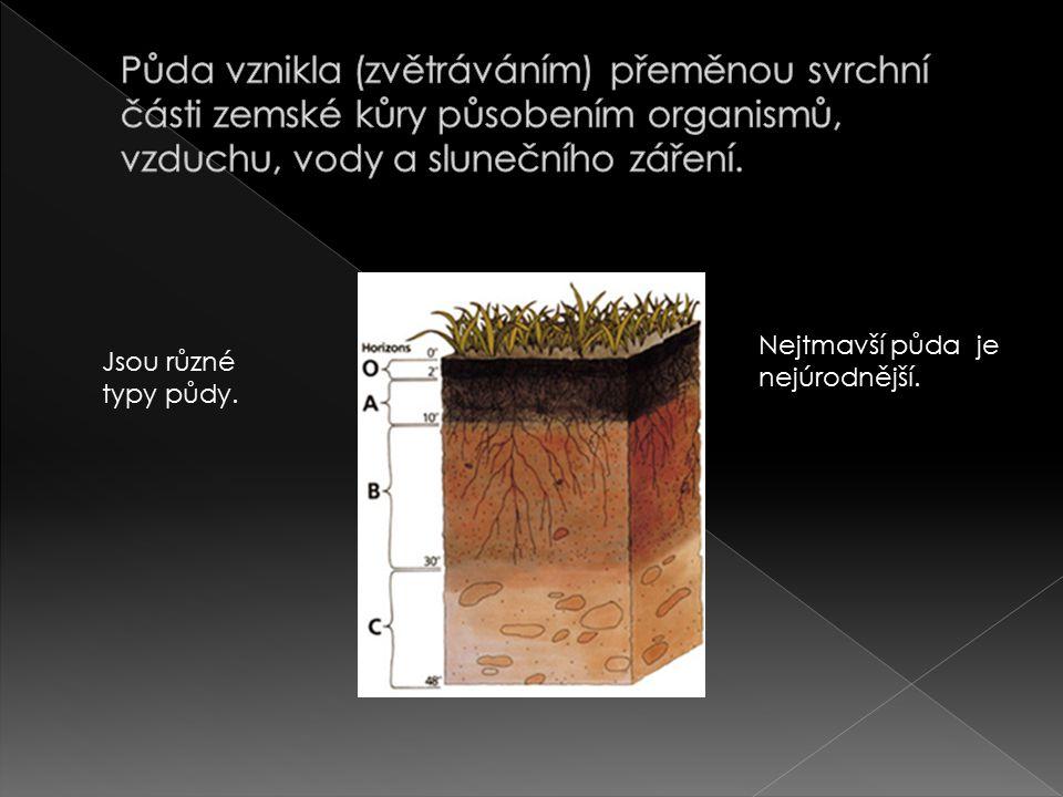 Nejtmavší půda je nejúrodnější. Jsou různé typy půdy.