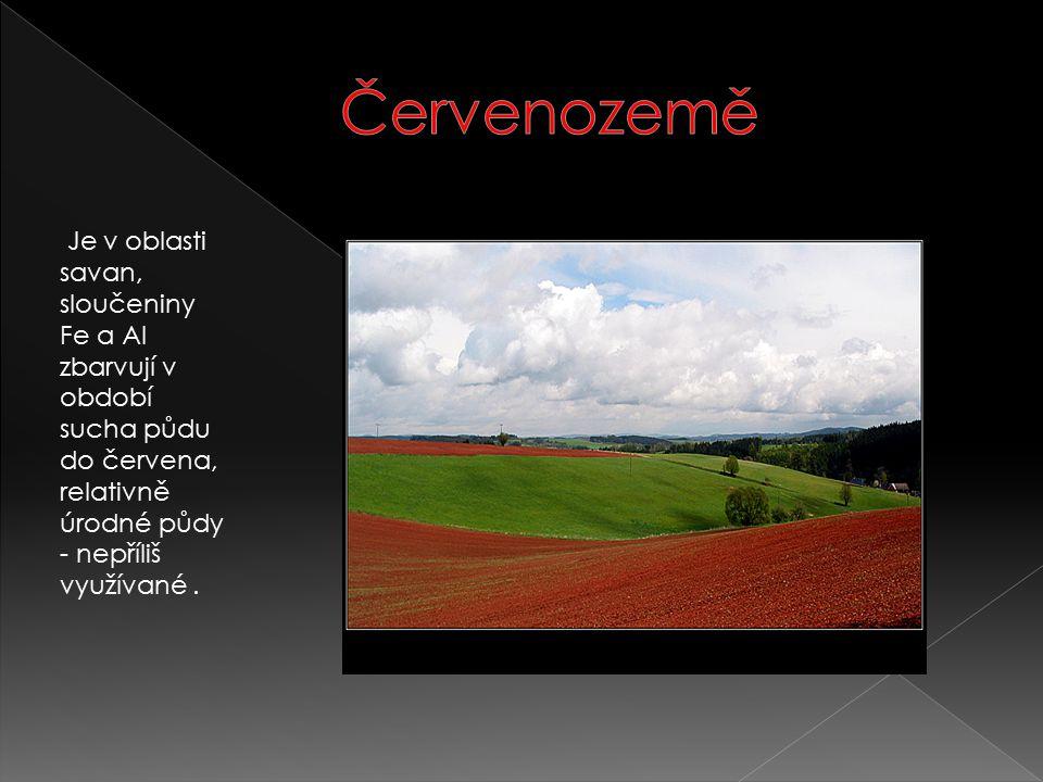 Je v oblasti savan, sloučeniny Fe a Al zbarvují v období sucha půdu do červena, relativně úrodné půdy - nepříliš využívané.