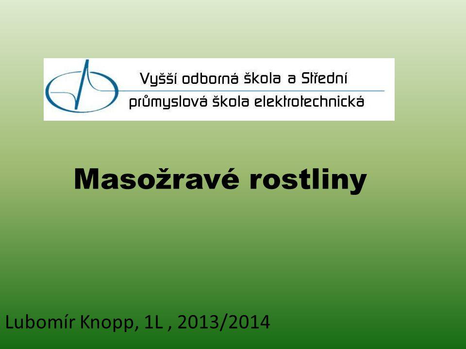 Masožravé rostliny Lubomír Knopp, 1L, 2013/2014