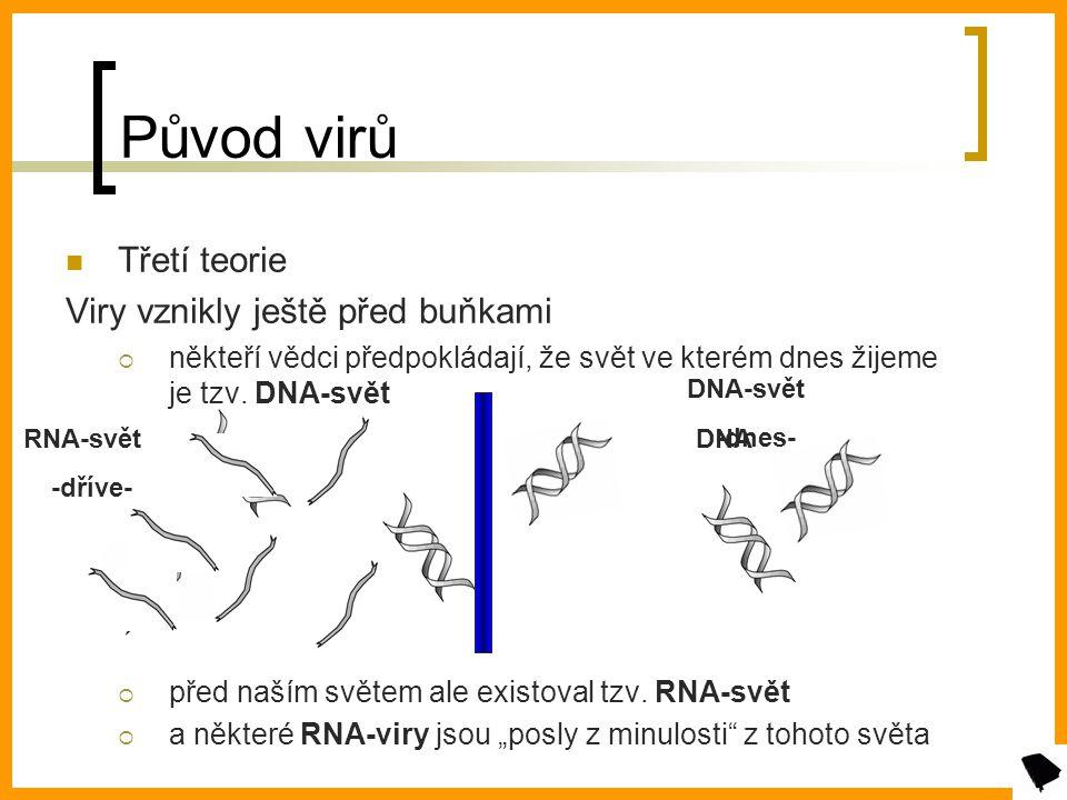 Původ virů Třetí teorie Viry vznikly ještě před buňkami nněkteří vědci předpokládají, že svět ve kterém dnes žijeme je tzv.