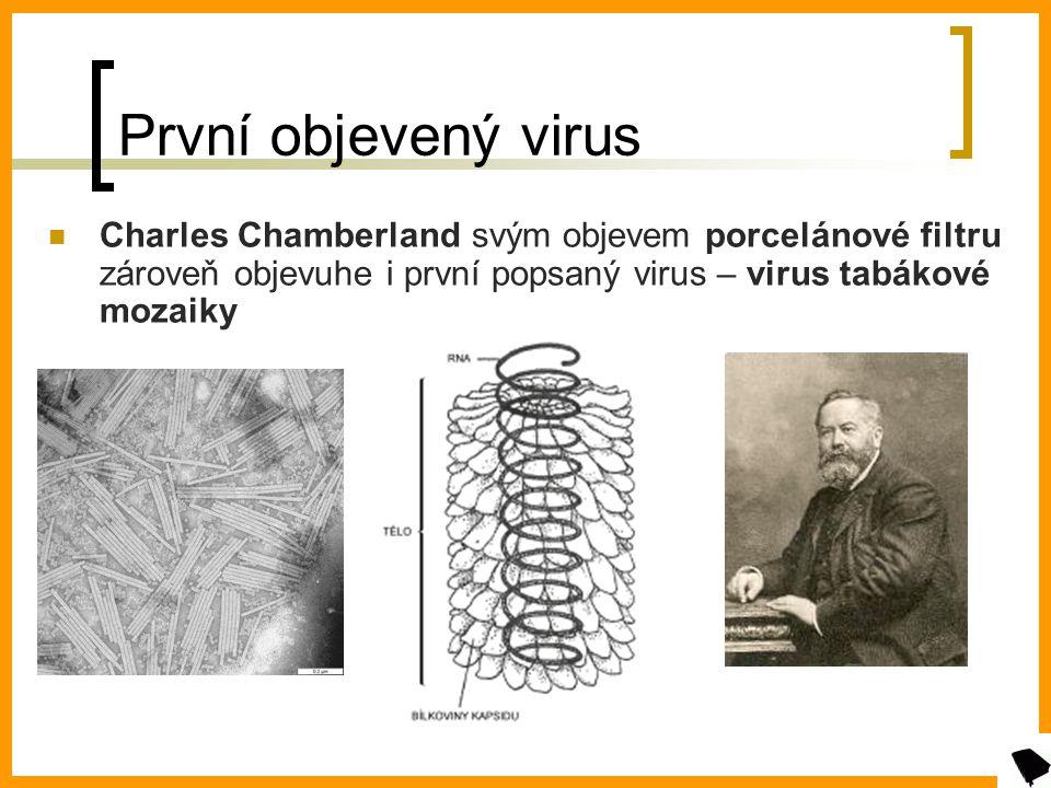 První objevený virus Charles Chamberland svým objevem porcelánové filtru zároveň objevuhe i první popsaný virus – virus tabákové mozaiky