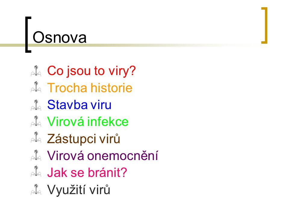 Osnova Co jsou to viry.