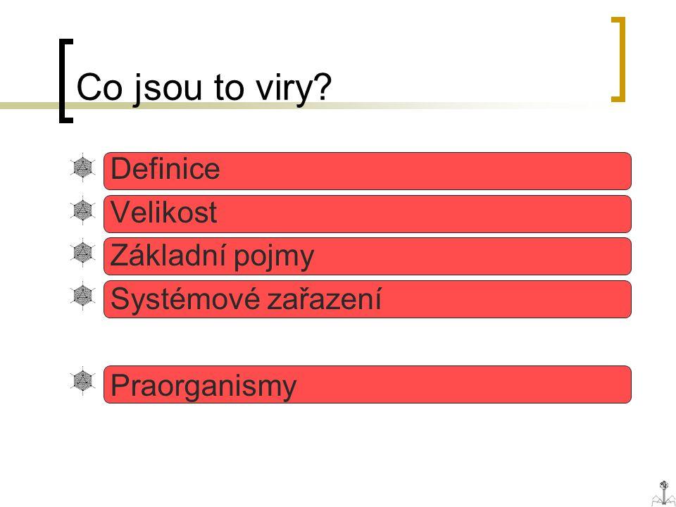Co jsou to viry? Definice Velikost Základní pojmy Systémové zařazení Praorganismy