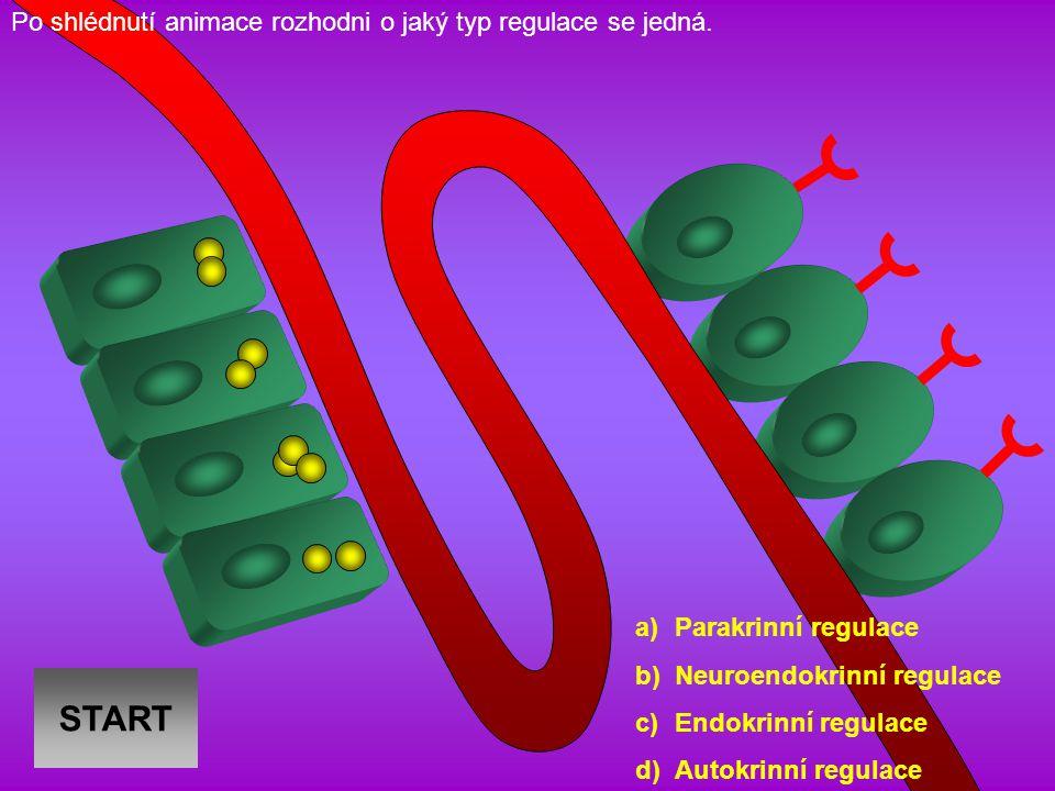 V obrázku, který se týká syntézy peptidových hormonů, přiřaď k číslům (1-5) jednotlivé popisky (A-E) a odpověz na testovou otázku.