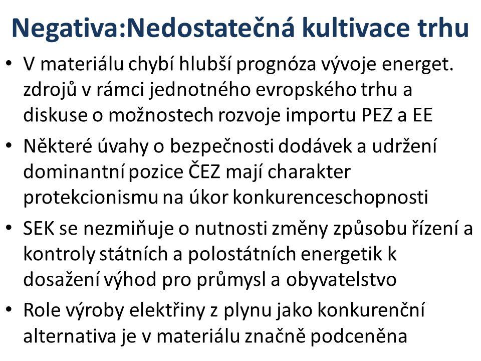 Negativa:Nedostatečná kultivace trhu V materiálu chybí hlubší prognóza vývoje energet.