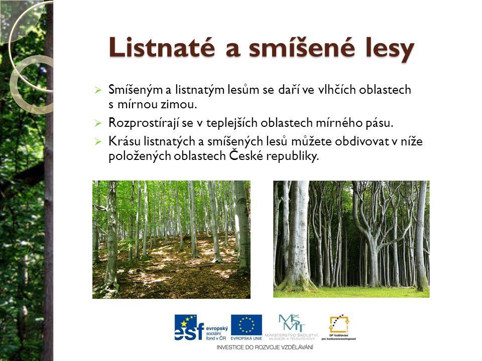 Listnaté a smíšené lesy  Smíšeným a listnatým lesům se daří ve vlhčích oblastech s mírnou zimou.  Rozprostírají se v teplejších oblastech mírného pá
