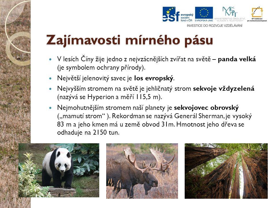 Zajímavosti mírného pásu V lesích Číny žije jedno z nejvzácnějších zvířat na světě – panda velká (je symbolem ochrany přírody). Největší jelenovitý sa