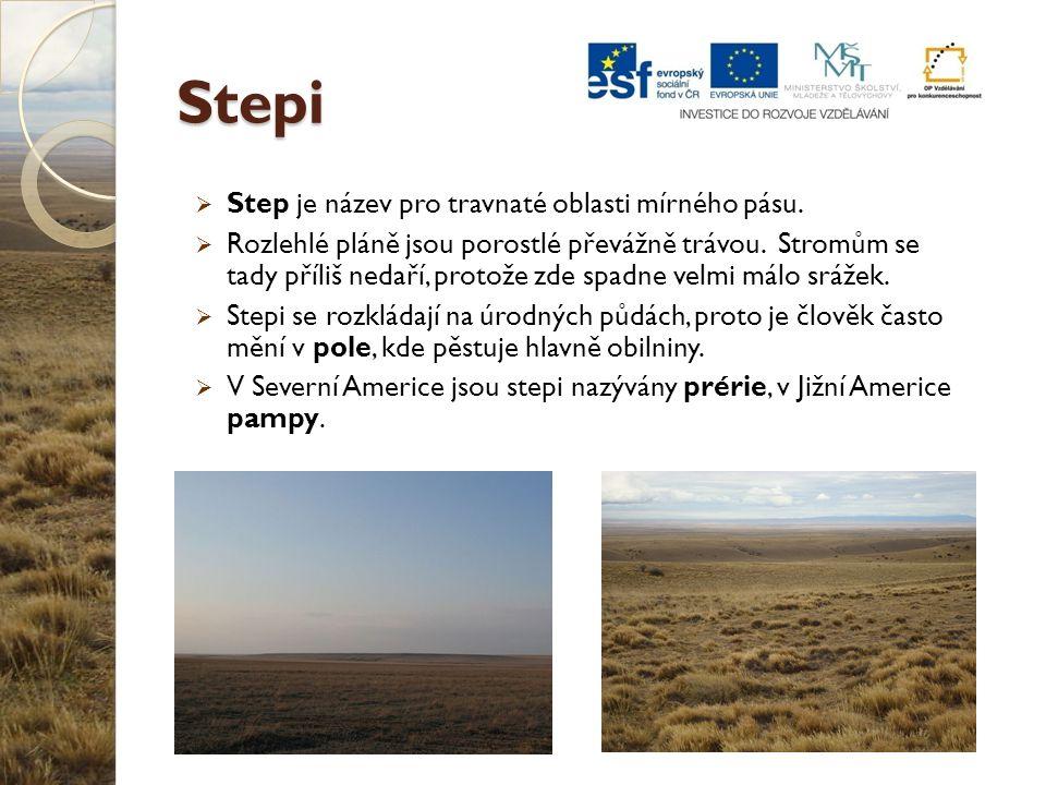 Stepi  Step je název pro travnaté oblasti mírného pásu.  Rozlehlé pláně jsou porostlé převážně trávou. Stromům se tady příliš nedaří, protože zde sp