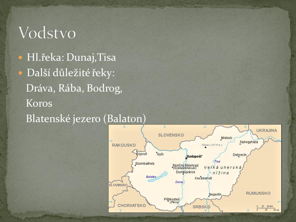 Hl.řeka: Dunaj,Tisa Další důležité řeky: Dráva, Rába, Bodrog, Koros Blatenské jezero (Balaton)