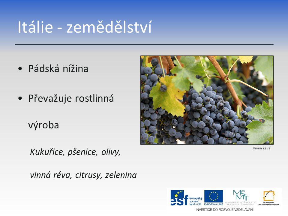 Itálie - zemědělství Pádská nížina Převažuje rostlinná výroba Kukuřice, pšenice, olivy, vinná réva, citrusy, zelenina Vinná réva