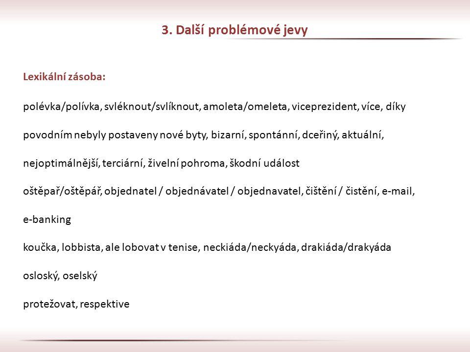 3. Další problémové jevy Lexikální zásoba: polévka/polívka, svléknout/svlíknout, amoleta/omeleta, viceprezident, více, díky povodním nebyly postaveny