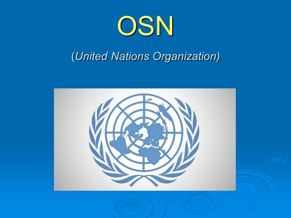 Odborné organizace OSN  Mezinárodní fond pro rozvoj zemědělství (IFAD)  Centrum OSN pro lidská obydlí (Habitat) – UNCHS  Organizace OSN pro vzdělávání, vědu a kulturu (UNESCO)  Světová zdravotnická organizace (WHO)  Organizace pro výživu a zemědělství (FAO)  Dětský fond OSN (UNICEF)