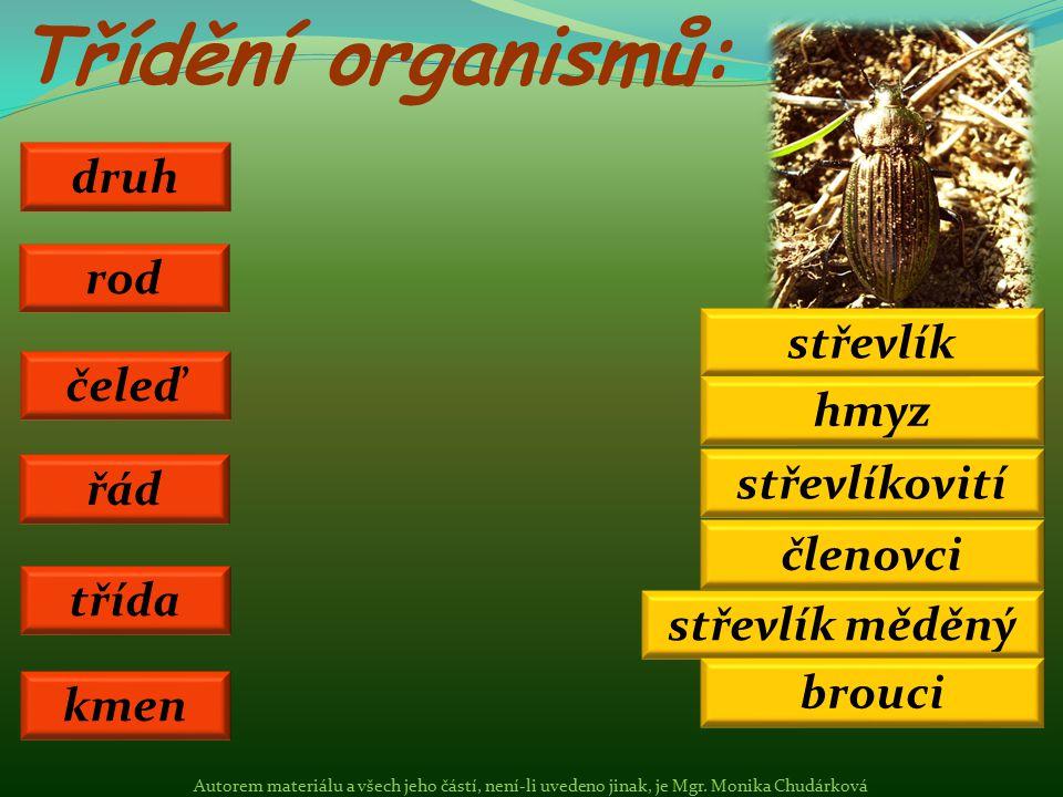Třídění organismů: druh třída řád čeleď rod střevlík měděný hmyz brouci střevlíkovití střevlík kmen členovci Autorem materiálu a všech jeho částí, nen